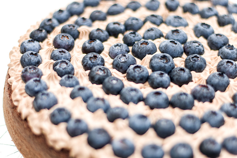 Chocolate blueberry cake close up