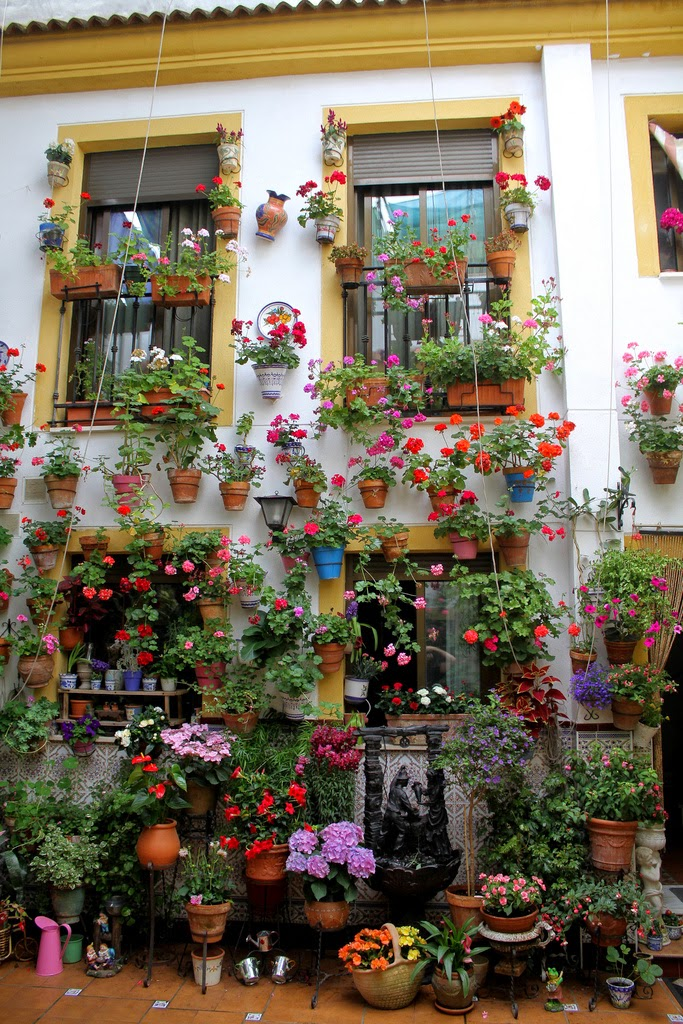 El aprendiz de jardinero macetas algo de historia - Inmobiliarias en cordoba espana ...