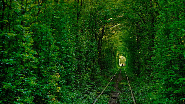 Tunnel of Love in Klevan, Ukraine (© Amos Chapple/Getty Images) 631