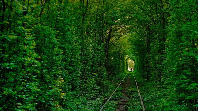 Tunnel of Love in Klevan, Ukraine (© Amos Chapple/Getty Images) 631