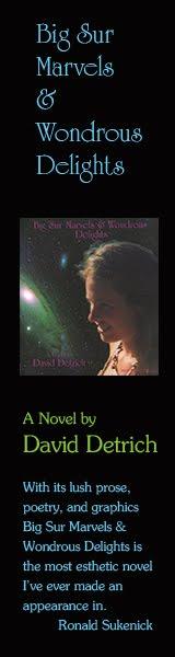 David Detrich | Big Sur Marvels & Wondrous Delights