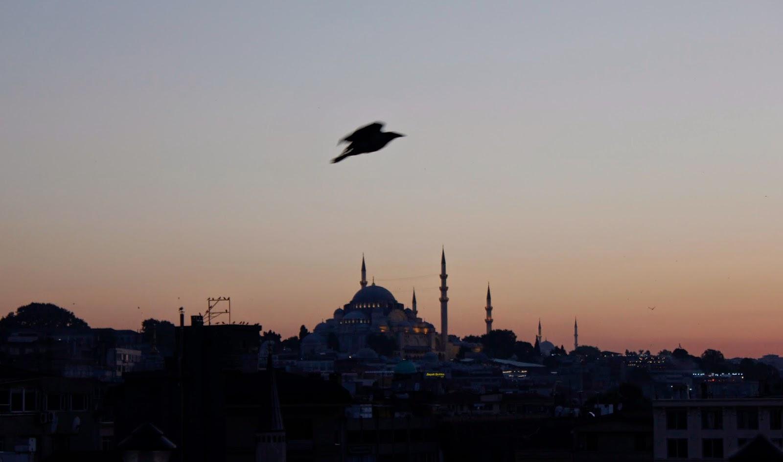 photography, istanbul, cosa visitare a istanbul, turchia, giulia napoli,  lifestyle blogger,