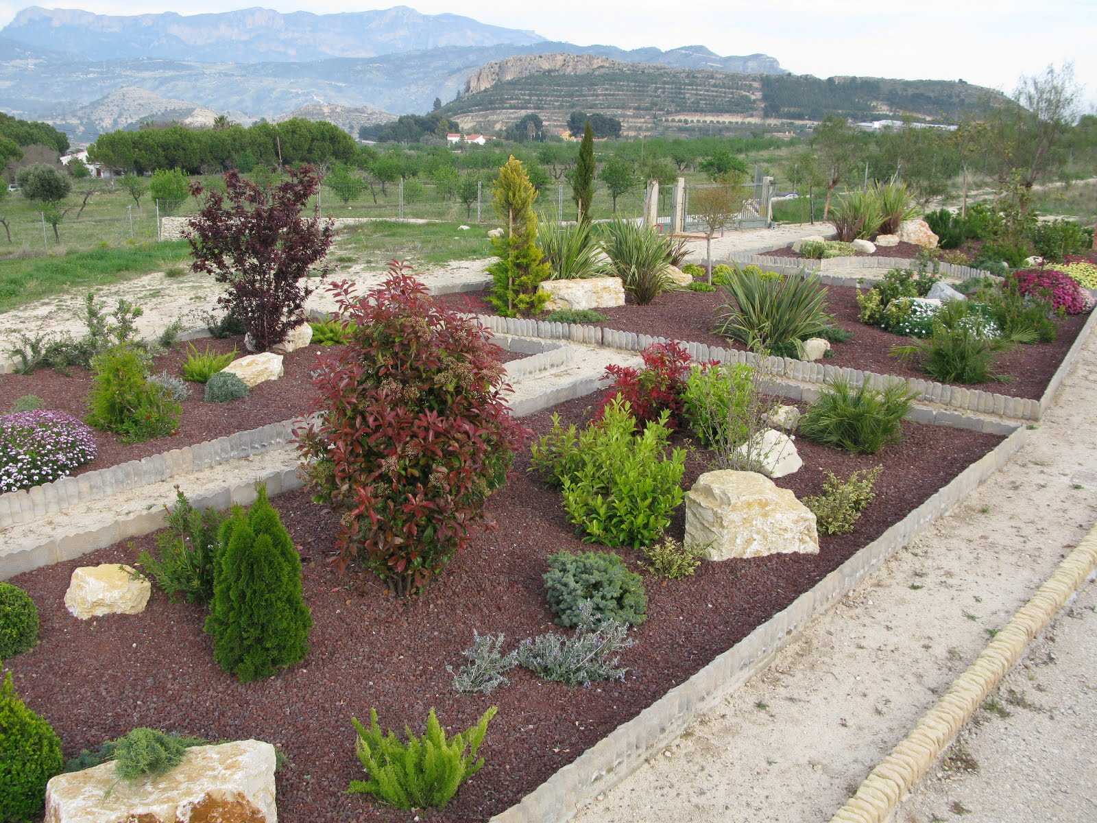 How to garden ideas for designing a mediterranean garden for Mediterranean garden design