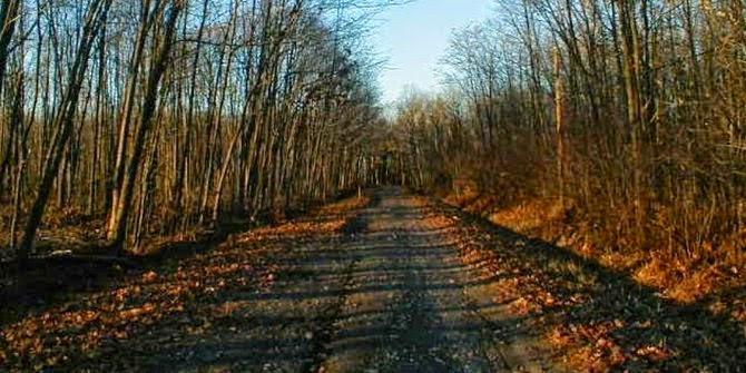 Boy Scout Lane, Wisconsin