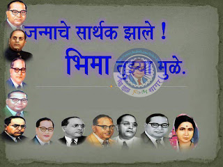 india chairman of the constitution drafting economist socialist