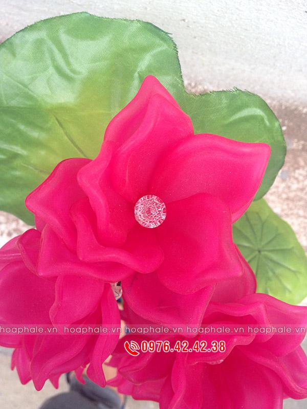 Cung cấp nguyên liệu làm hoa pha lê ở hà nội