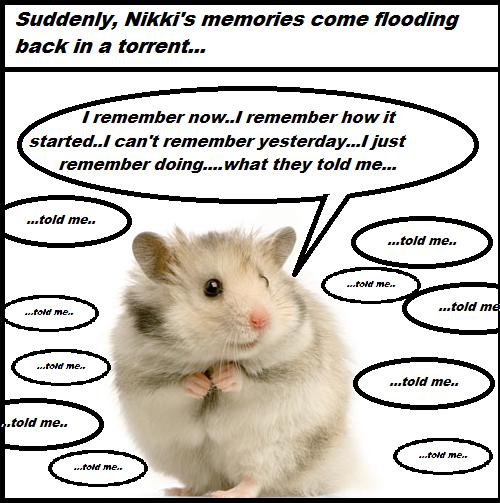nikki remembers
