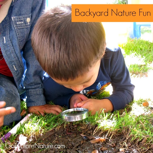 Backyard Nature Fun