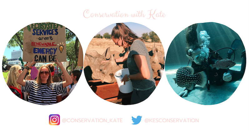 Conservation With Kate