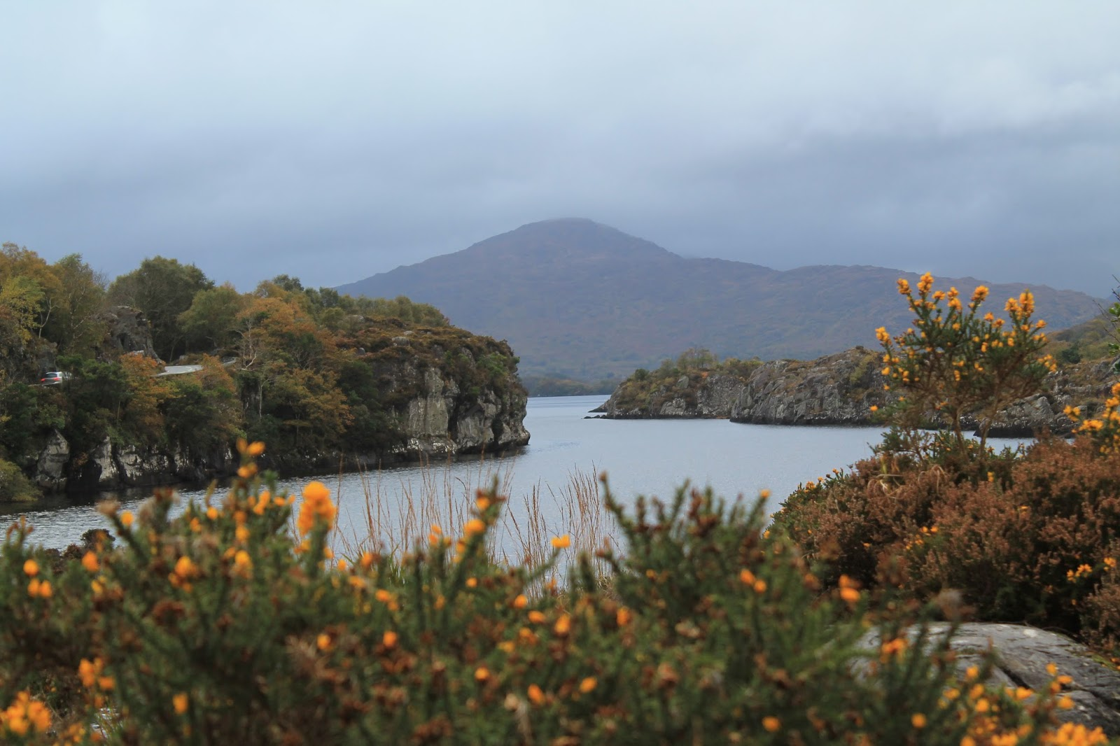 killarney national park Killarney national park overview nature lovers visiting killarney national park can explore top areas like gap of dunloe a stop at other sights like meeting of the waters and ladies view will create memories.