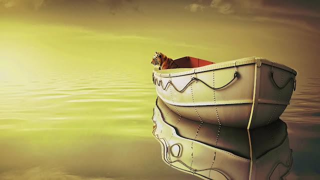 La vida de Pi Bote Tigre Mar