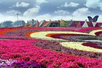 Xinshe Taichung Flower Festival 2015