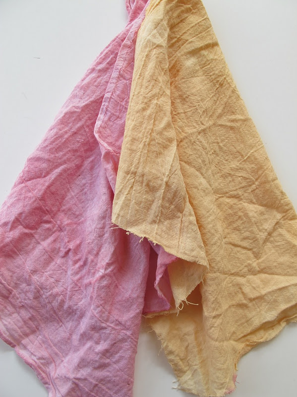 Diy Natural Dyes A Pair A Spare