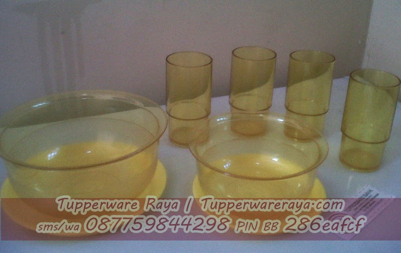 Tupperware Simply Orange Dinning Set