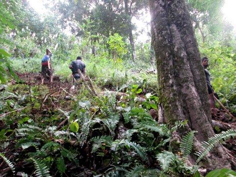 Ouverture des sentiers de randonnée du Raid Painapo 2015