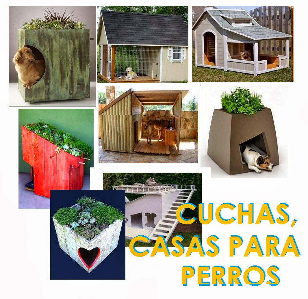 Cuaderno de ideas para microemprendimientos cuchas casas for Casas para perros