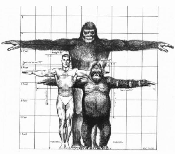 What is the North American Great Ape Gigantopithecus Giganteus