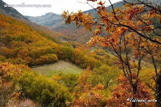Escapada al Valle del Jerte. OTOÑADA 2013