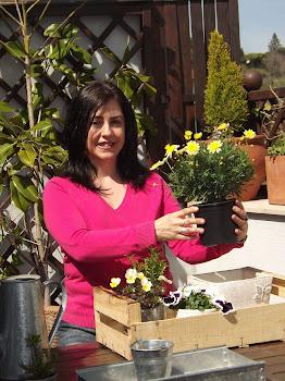 Con las plantas en la terraza...