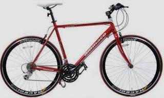 Bisnis sewa sepeda dayung online