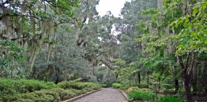 Tallahassee State Park