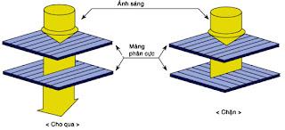 Hình 10 - Tấm phân cực trên mỗi điểm mầu thường được sẻ rãnh vuông góc.