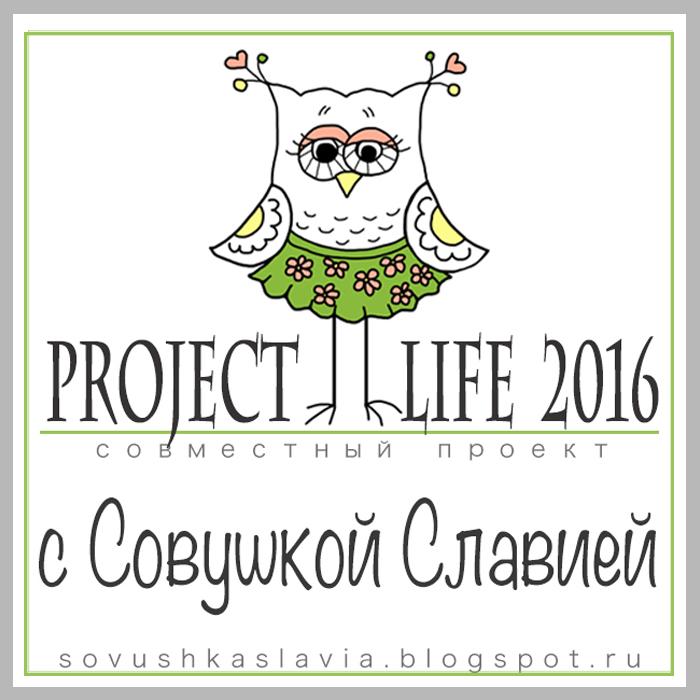 СП Project Life2016
