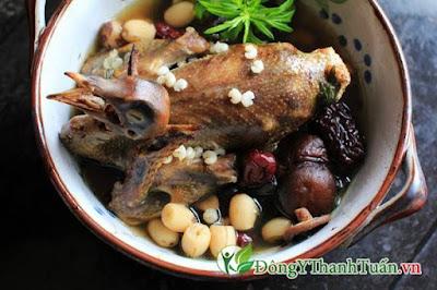 Bồ câu hầm thuốc bắc là món ăn chữa viêm mũi dị ứng