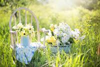 Οικολογικός τρόπος να απομακρύνετε τους μύκητες και τα ακάρεα των φυτών σας