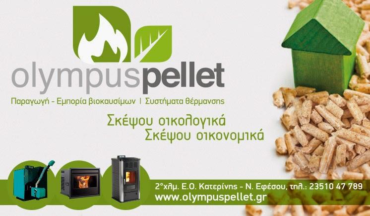 Πρότυπη μονάδα παραγωγής pellet