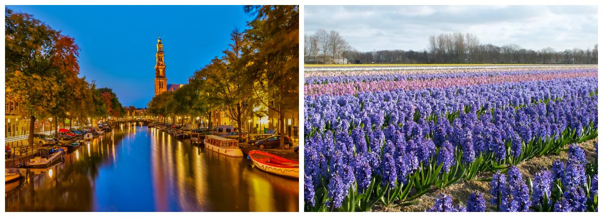 top 5 viagens, destino, viagem, viagens, trip, wanderlust, micaela ramos, amsterdam, holand,