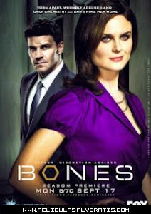 Bones 8×17 Sub Español Online