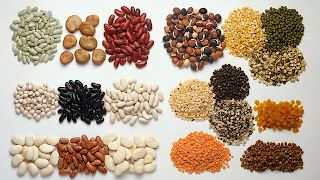 Plant Foods Rich In Protein Besides Meat
