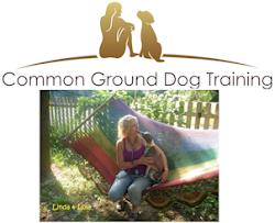Welcome to my Dog Training Garden