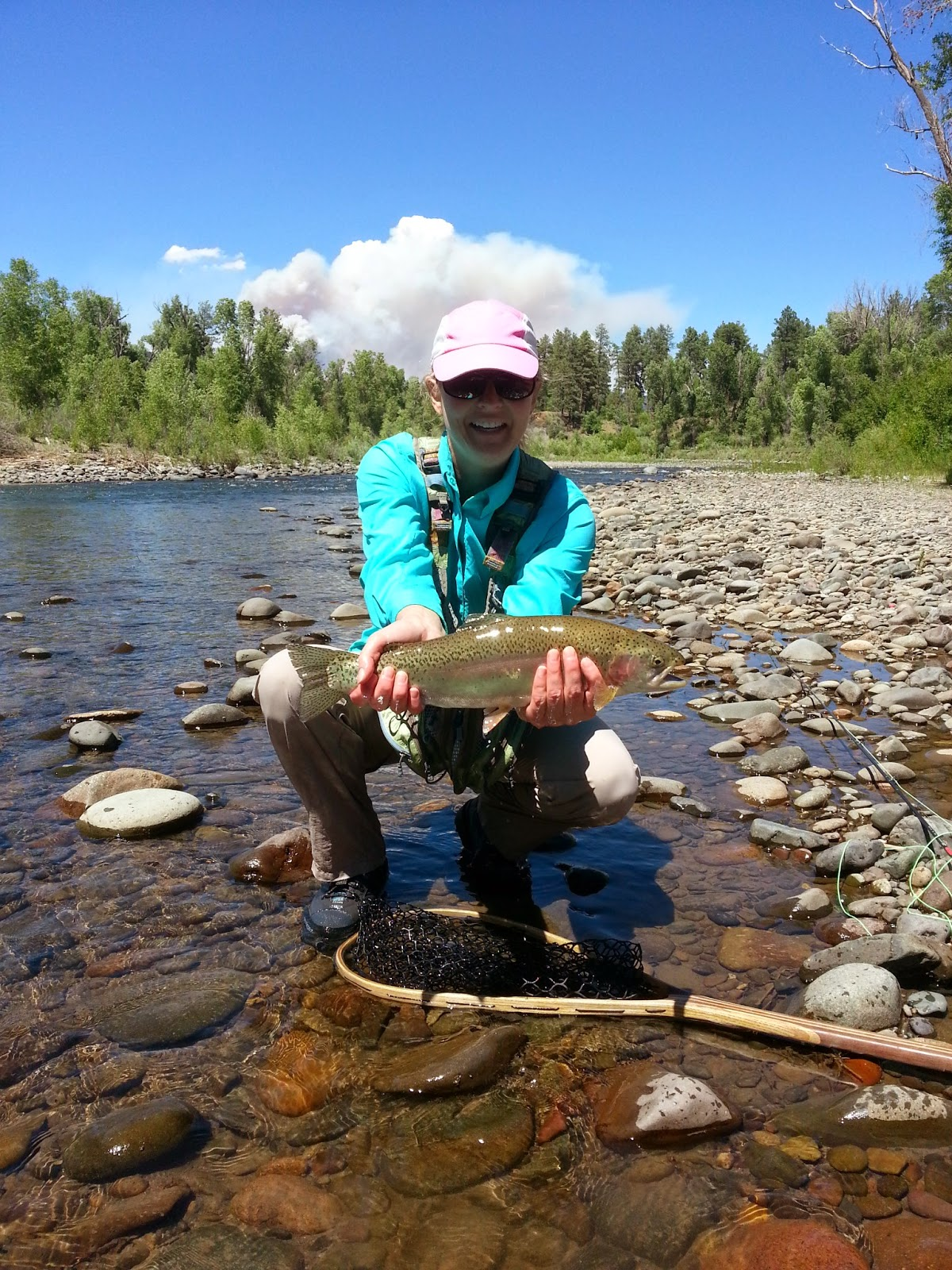 The san juan river fly fishing report pagosa springs co for Fish store colorado springs