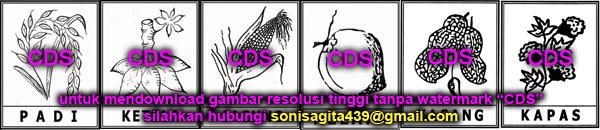 logo gambar pilkades lengkap