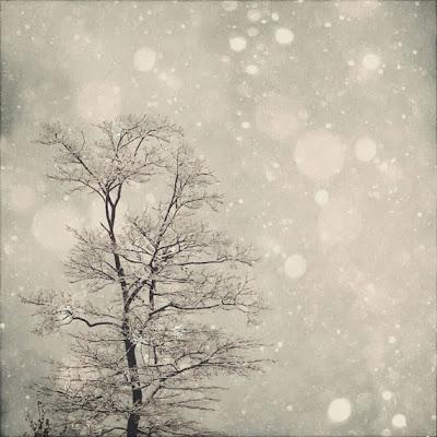 https://www.etsy.com/listing/85944826/winter-art-first-snow-8x8-fine-art?ref=favs_view_3