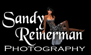 Sandy Reinerman Photography