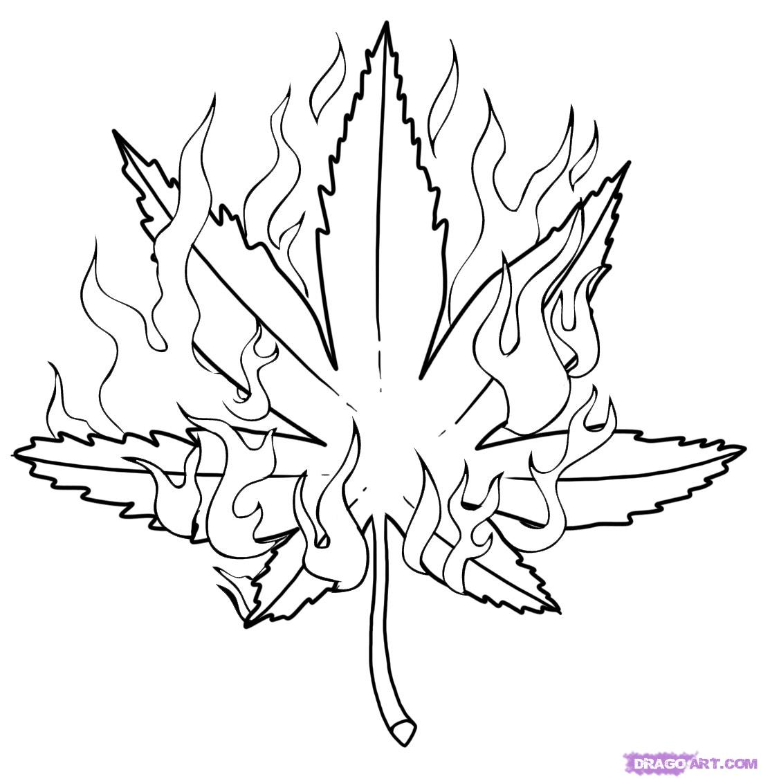 how-to-draw-a-pot-leaf-step-6.jpg