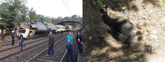 """999: el """"Tren Celta"""" es la Osa Mayor y el oso muerto es la Osa Menor"""