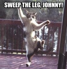 Lihat Gambar gambar kucing lucu di bawah ini kalian pasti Lucu abis dengan kepintaran kucing lucu di bawah inirata rata poto lucu kucing ini saya dapatkan dari gambar kucing orang luar negeri mereka memberi makan kucignya dengan vitamin yang bagus kali ya makanya pintar pintar kucing lucu yang ada pada gambar kucing lucu di bawah ini, ok langsung saja ke TKP gan biar enak lihat gambar gambar lucunya.