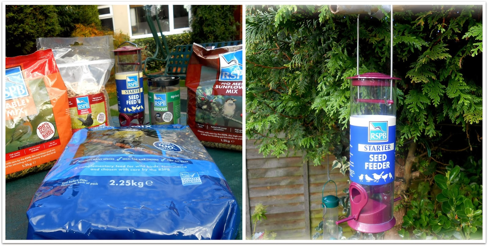 RSPB Started Feeder and Food