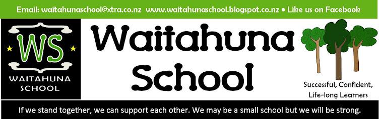 Waitahuna School