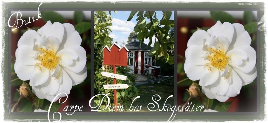 ♥♥♥Butik Carpe Diem hos Skogssäter♥♥♥