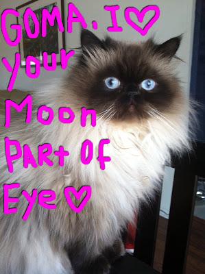 Goma moon eye 01