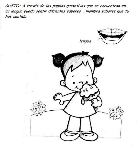 Dibujo de 5 sentidos - Imagui