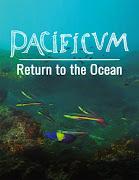 Pacificum: El Retorno al Océano