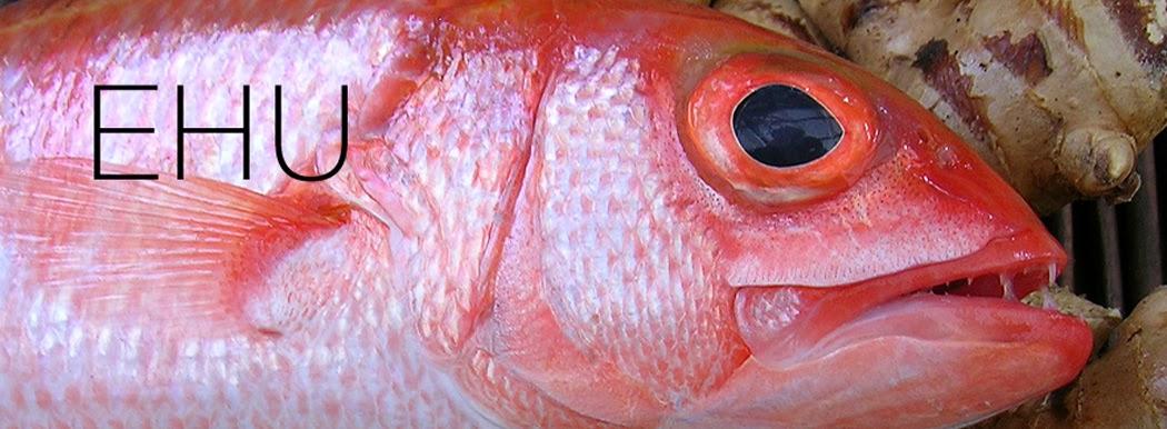 Tasting hawai 39 i with moloka 39 i chef james temple ehu for Edible hawaiian fish