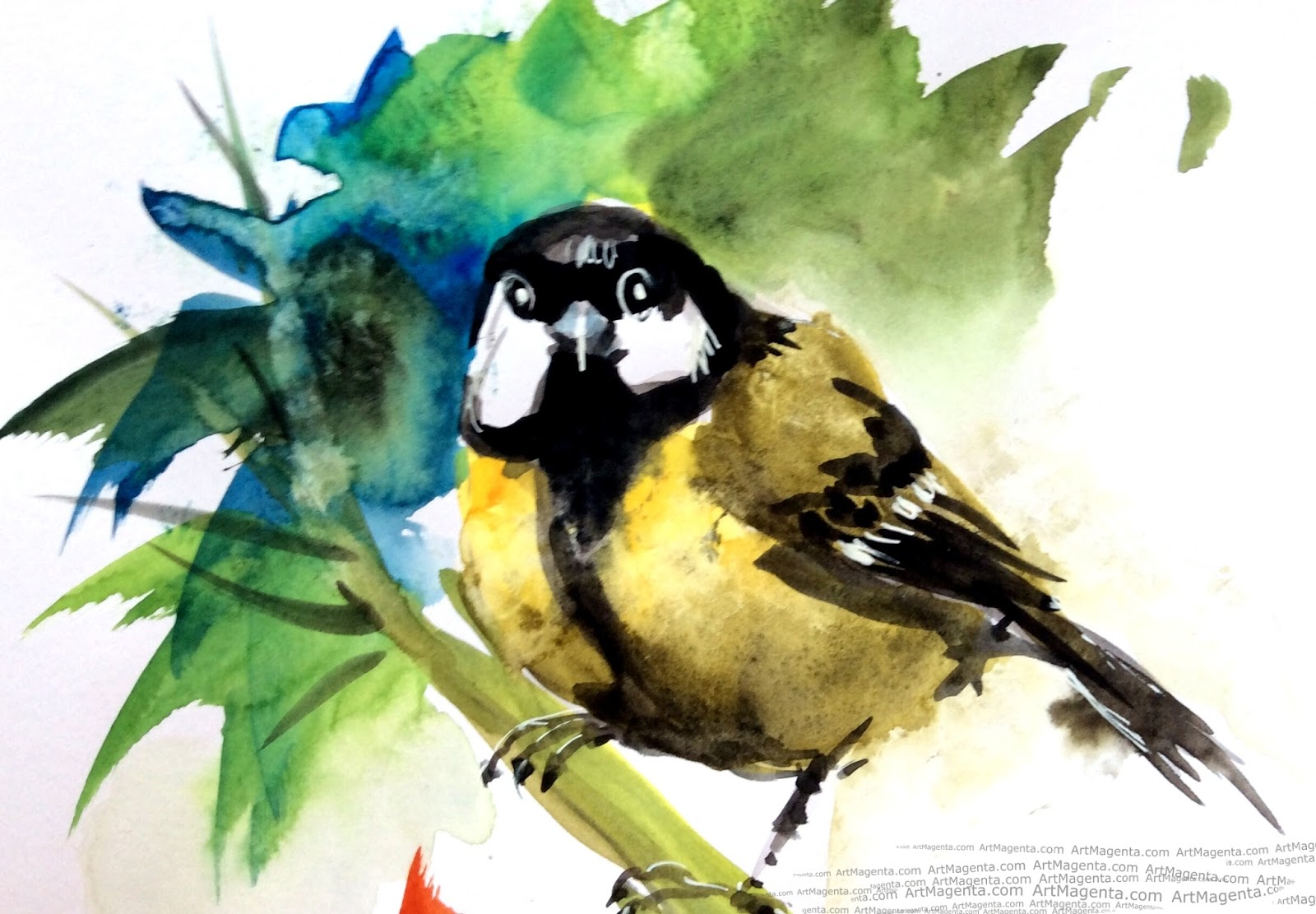 Great Tit watercolor sketch painting. Bird art drawing by illustrator Artmagenta