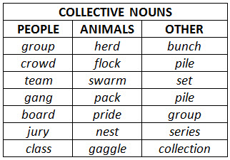 an analysis of noun and pronoun in the name of the person Pronouns here is a list of all of the skills that cover pronouns these skills are organized by grade, and you can move your mouse over any skill name to preview the skill.